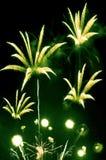 Fuochi d'artificio verdi e gialli Immagini Stock