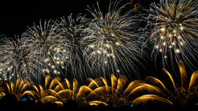 Fuochi d'artificio VI Immagine Stock Libera da Diritti