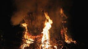 Fuoco alla notte combustione stock footage