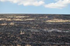 fuoco burning Fotografia Stock Libera da Diritti