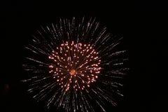 Fuoco d'artificio 1 Fotografia Stock Libera da Diritti