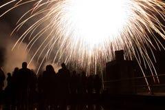 Fuoco d'artificio bianco Fotografia Stock Libera da Diritti