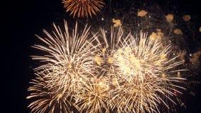 Fuoco d'artificio contro cielo notturno stock footage