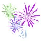 Fuoco d'artificio di vettore o fiori decorativi Fotografie Stock