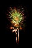 Fuoco d'artificio naturale Fotografie Stock