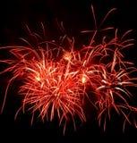 Fuoco d'artificio rosso Immagine Stock
