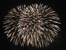 Fuoco d'artificio rotondo Fotografia Stock