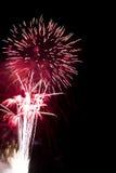Fuoco d'artificio sul cielo scuro Fotografia Stock Libera da Diritti
