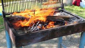 Fuoco del barbecue archivi video