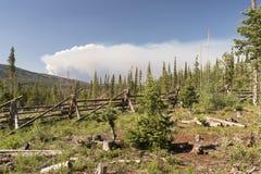 Fuoco del Beaver Creek in Colorado centrale del nord Fotografie Stock Libere da Diritti