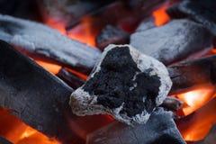 Fuoco del carbone Immagine Stock Libera da Diritti