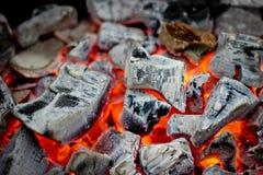 Fuoco del carbone di legna Fotografia Stock