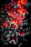 Fuoco del carbone di legna fotografie stock