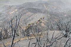 Fuoco del centrale elettrico ~ Santa Clarita Mountains ~ un'estate di 2013 Immagini Stock