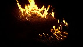 Fuoco della benzina che brucia sulla terra video d archivio
