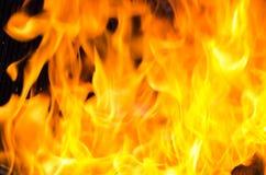 Fuoco della fiammata dalla fiamma Immagini Stock Libere da Diritti
