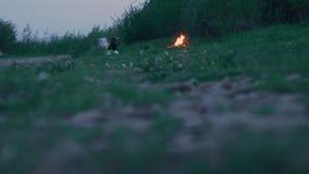 Fuoco di accampamento bruciante sulla riva erbosa verde vicino al fiume archivi video