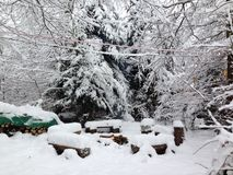 Fuoco di accampamento congelato Fotografia Stock