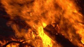 Fuoco di accampamento 2 fal? Primo piano delle fiamme che bruciano sul fondo nero, movimento lento stock footage