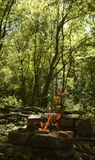 Fuoco di accampamento nella foresta Fotografie Stock