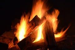 Fuoco di accampamento nella notte Fotografia Stock