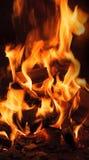 Fuoco di ceppo bruciante Fotografie Stock