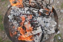 Fuoco di legno nella cottura della griglia Immagine Stock Libera da Diritti