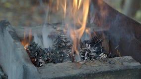 Fuoco di una fornace della forgia con le pigne in una fucina del villaggio stock footage
