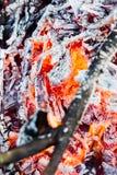 Fuoco e calore Immagini Stock