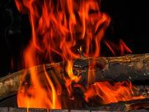 Fuoco e ceppo di legno Fotografia Stock