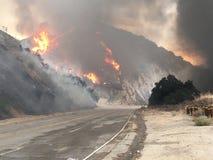 Fuoco e fiamme massicce che bruciano accanto alla strada fotografia stock