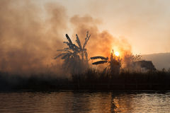 Fuoco e fumo sui campi tropicali Fotografia Stock Libera da Diritti