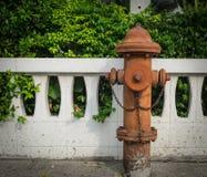 Fuoco Hidrant Immagini Stock Libere da Diritti