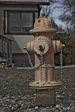 Fuoco Hidrant Fotografie Stock Libere da Diritti