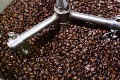 Fuoco molle dei fagioli del caffè Arabica che stanno arrostendi in macchina del tostacaffè immagine stock