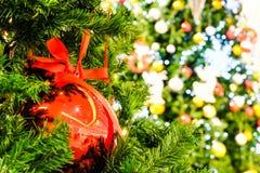 Fuoco molle della palla rossa di chrismas sull'albero di Natale e sull'offuscamento falsi fotografie stock