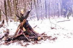 Fuoco nella foresta di inverno Immagine Stock Libera da Diritti