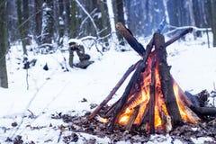 Fuoco nella foresta di inverno Immagine Stock