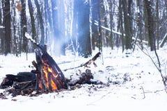 Fuoco nella foresta di inverno Fotografie Stock Libere da Diritti