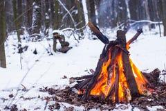 Fuoco nella foresta di inverno Fotografia Stock