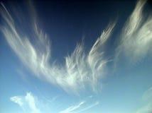 Fuoco Phoenix Fotografie Stock