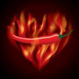 Fuoco rosso dei peperoncini rossi Fotografia Stock