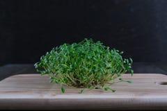 Fuoco selettivo del crescione colpo fresco dell'insalata del macro Immagine Stock Libera da Diritti