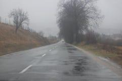 Fuoco selettivo della strada e degli alberi durante la pioggia autunnale con il cielo grigio su fondo immagine stock libera da diritti
