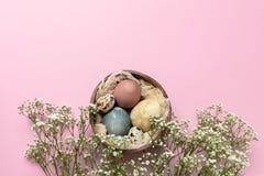 Fuoco selettivo delle uova di Pasqua decorate colorate nelle coperture della noce di cocco, fiori del gypsophila fotografia stock libera da diritti