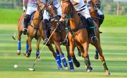 Fuoco selettivo i giocatori di polo del cavallo Fotografia Stock