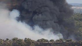 Fuoco selvaggio pericoloso con fumo enorme archivi video