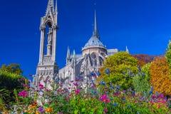 Fuoco sui fiori della priorità alta Vista bello Notre Dame Cathedral fotografia stock