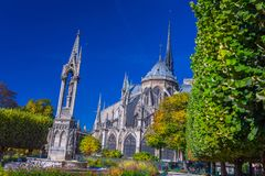Fuoco sui fiori della priorità alta Vista bello Notre Dame Cathedral fotografia stock libera da diritti