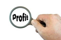 Fuoco sul profitto Immagini Stock Libere da Diritti